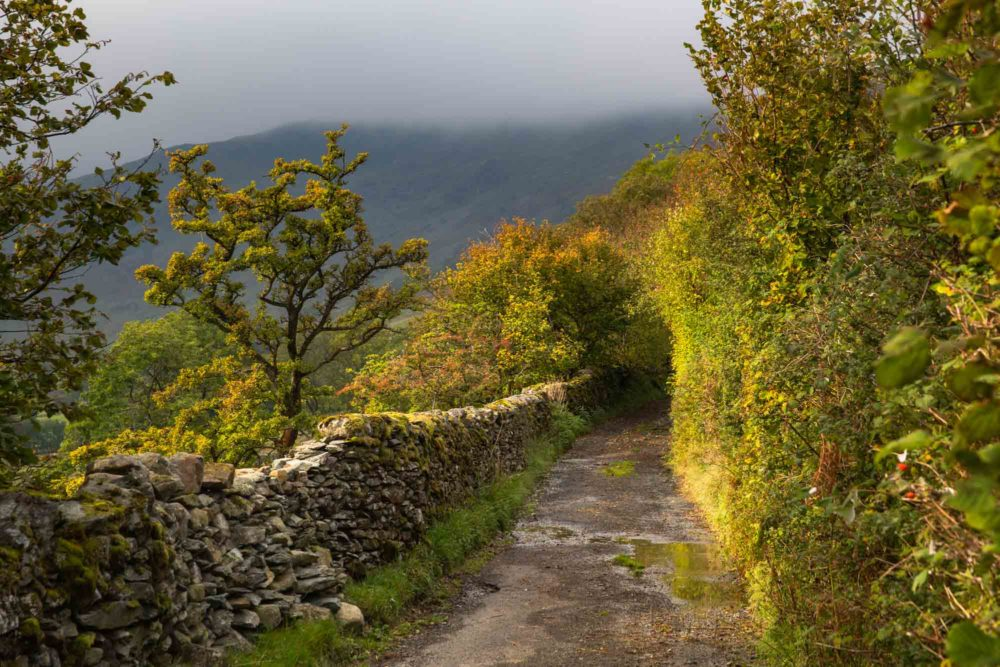 Autumn Lanes Heading Into The Mountains. The Lake District