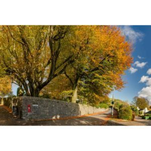 Autumn On Belmont. Ulverston 1
