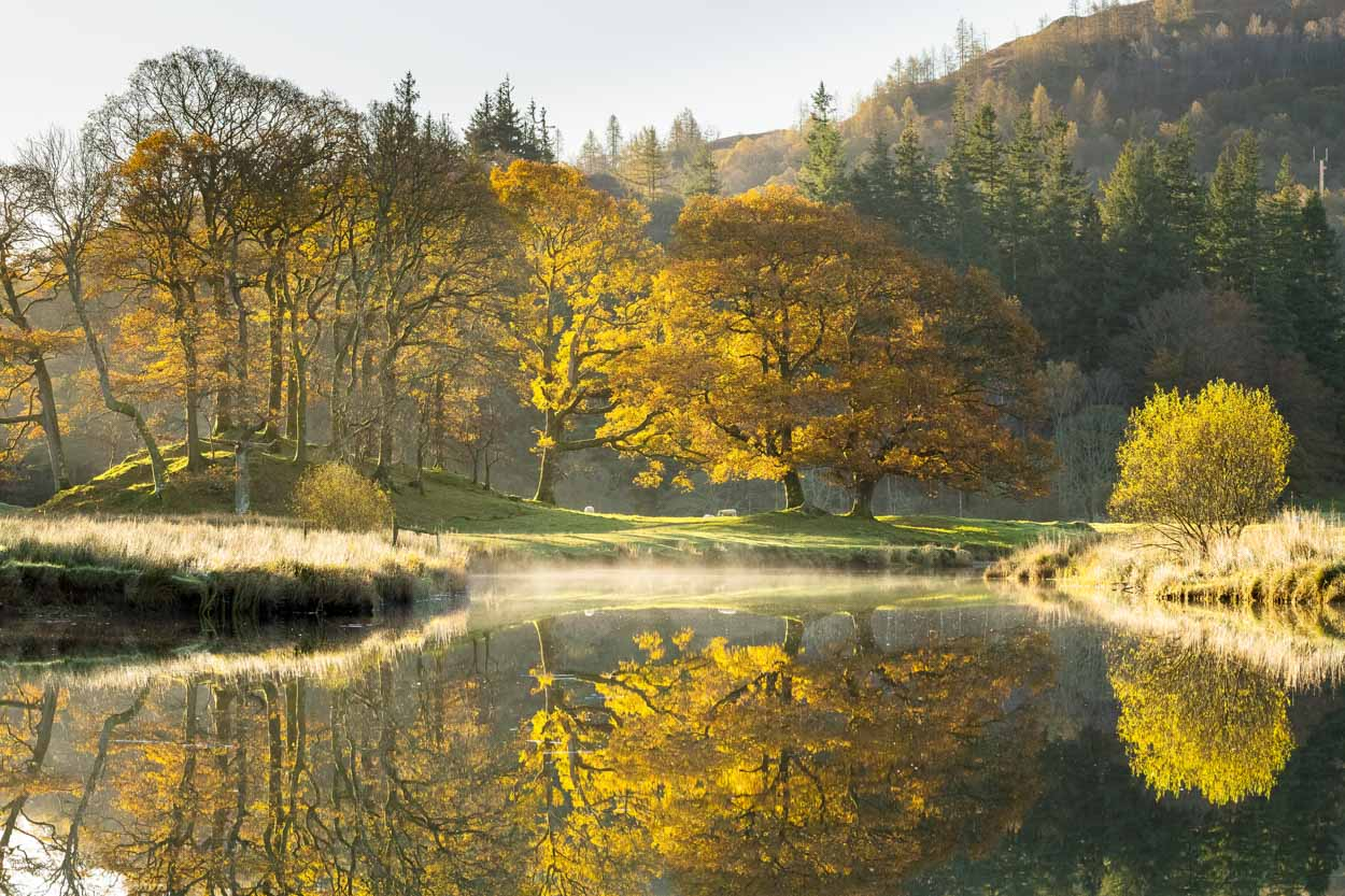 Autumn On The River Brathay. The Lake District