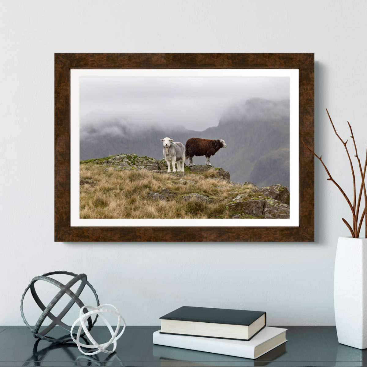 Herdwick Sheep And The Highest Mountains In England. The Lake District2