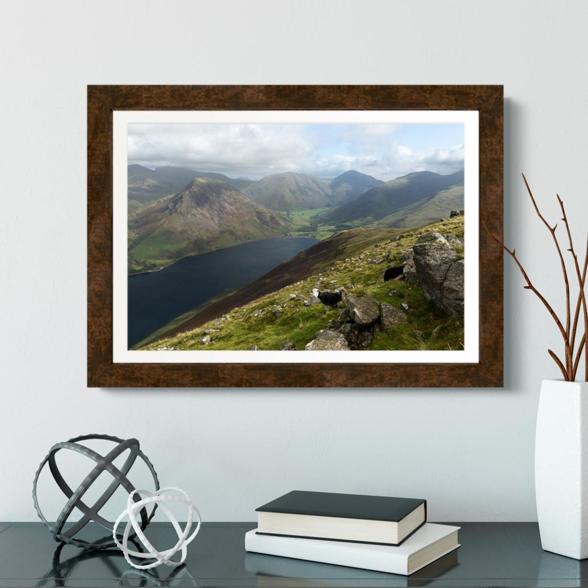 A Herdwick Sheep Looking Down On To Wastwater. The Lake District1